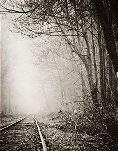 Railroad Tracks Fog Landscape Photography