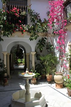 The flowers in the courtyard Mexican Courtyard, Mexican Patio, Spanish Courtyard, Mexican Home Decor, City Flowers, Hacienda Homes, Porch And Balcony, Rest House, Courtyard Design