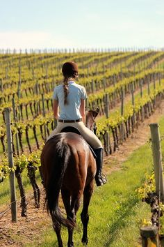 riding through the vineyard.. Just like the parent trap