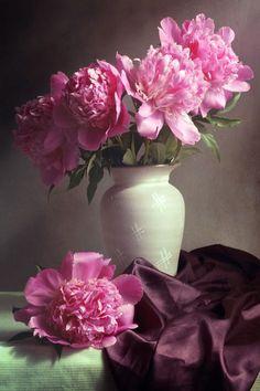 Flowers Photography Still Life 60 Ideas photography flowers 617485798890062876 Exotic Flowers, Pink Flowers, Beautiful Flowers, Pink Peonies, Beautiful Pictures, Oil Painting Flowers, Watercolor Flowers, Flower Vases, Flower Art