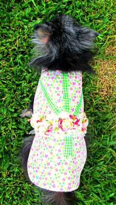 Corduroy Little Canine's Dress  Pinwale by BloomingtailsDogDuds, $23.95