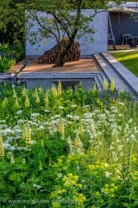 Chelsea Flower Show Medals Announced! Congratulations to the Laurent-Perrier Garden, Best Show Garden, and all our award winners at the 2014  RHS Chelsea Flower Show!  We are of course delighted that our resident garden design expert (and MyGardenschool founder) – Duncan Heather – called the best in show winner in...