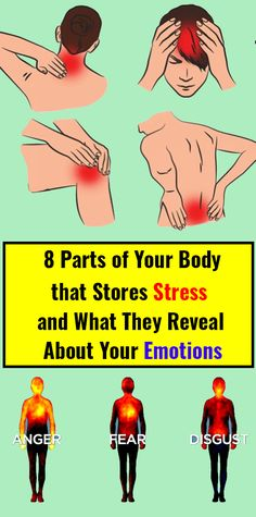 8 Parts of Your Body that Stores Stress and What They Reveal About Your Emotions - Health Beauty Sky Health And Beauty, Health And Wellness, Health Fitness, Wellness Fitness, Healthy Women, Healthy Tips, Healthy Habits, Diabetes Management, Muscle Groups