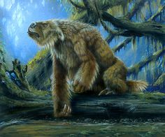 Paleo-Art: CW Collection: Prehistoric Animals on Behance Prehistoric Creatures, Mythical Creatures, Primates, Mammals, Ground Sloth, Dragons, Giant Anteater, Mysterious Universe, Humanoid Creatures