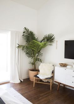 Palm trees and cozy sheepskin in this cute corner