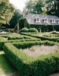 Stephen Sills: A former garage, the building stands behind a parterre planted with boxwoods and lavender. Gray Garden, Shade Garden, Home And Garden, Formal Gardens, Outdoor Gardens, Houses In America, Inside Job, Town And Country, Country French