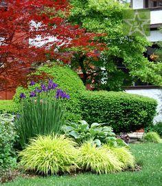 Front Yard Garden Design Simple and elegant combination of Siberian Iris, large Hosta and Japanese Forest Grass Kaaren Frantzen Garden Revolution -