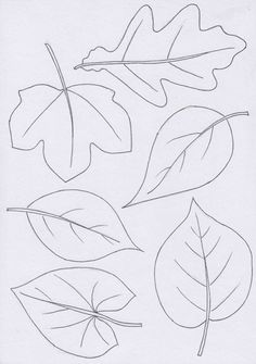 Autumn Activities For Kids, Fall Crafts For Kids, Art For Kids, Fall Coloring Pages, Leaf Coloring, Autumn Crafts, Holiday Crafts, Maple Leaf Template, Embroidery Patterns