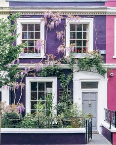 To borrow a phrase from the fashion world, I think this an example of the house wearing the wisteria, rather than the wisteria wearing…