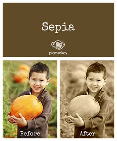 Make your photo timeless in one click with the Sepia effect. Tip: Use the color picker to get the perfect sepia tone for your taste.