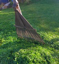 I was mowing our lawns today, and because the catcher doesn't work very well on our lawn mower, was using an old bamboo leaf rake inherited from my Garden Rake, Bamboo Leaves, Outdoor Furniture, Outdoor Decor, Lawn Mower, Hammock, Lawn Edger, Landscape Rake, Grass Cutter