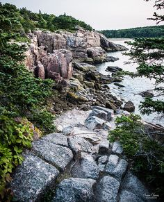 Acadia National Park Maine | by Susan Garver Photography
