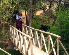 Resultado de imagen para puentes indigenas en guadua Garden Bridge, Outdoor Structures, Landscape, Google, House, Houses, Bridges, Home, Scenery