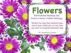 your students will have lots of fun with this stem challenge first