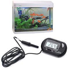 Aquarium Tank Temperature