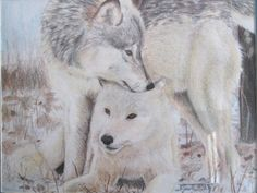 Wolves by Dragonsfire867 on DeviantArt