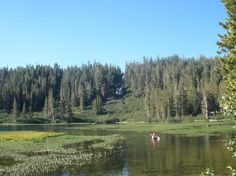 Bear Lakes Basin, California   Images of Twin Lakes Campground, Mammoth Lakes - Cabin/Campground ...