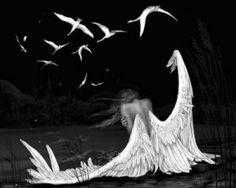 angels.... broken wings.... fallen