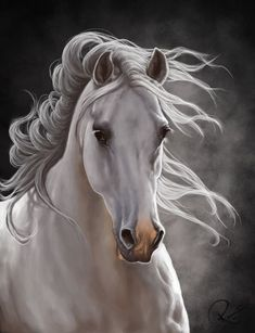 White Horse Painting by NutLu www. Pretty Horses, Horse Love, Beautiful Horses, Animals Beautiful, Beautiful Things, Beautiful People, Horse Drawings, Animal Drawings, Art Drawings