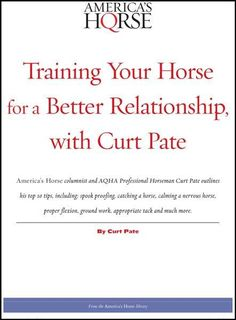 AQH Store is opening soon American Quarter Horse, Horse Training, Best Relationship, Ebook Pdf, Rodeo, Outline, Horses, Digital, Store