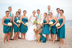 please look at the golden retriever!!  Weird when you find yourself randomly on pinterest.....but SO glad I could help inspire brides :)