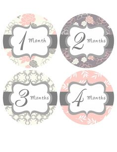 Monthly Milestone Stickers Baby Month Stickers Baby Girl Pink Grey Floral Bodysuit Sticker Month Stickers Baby Shower Gift Photo Prop Mia2-R on Etsy, $13.00