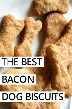 the best {and easiest} homemade bacon dog biscuits recipeYou can find Dog cookies and more on our website.the best {and easiest} homemade bacon dog biscuits recipe Dog Cookie Recipes, Easy Dog Treat Recipes, Homemade Dog Cookies, Dog Biscuit Recipes, Homemade Dog Food, Dog Food Recipes, Recipe For Homemade Dog Biscuits, Best Dog Biscuit Recipe, Bacon Dog Treats