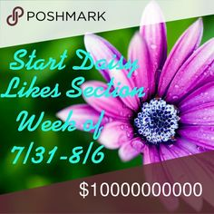 Placemarker ~ See tips & tricks Use this to keep your Daisy's organized &  to check your shares... example in tips & tricks post Other