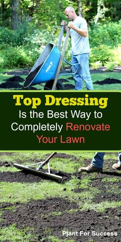 Garden Sculptures Top dressing and overseeding is the absolute best way to renovate your lawn. If your lawn is showing signs of weakness, consider these steps to have your best lawn ever. Lawn Soil, Weeds In Lawn, Lawn Repair, Lawn Care Business, Business Cards, Lawn Care Tips, Fall Lawn Care, Lawn Edging, Grass Edging