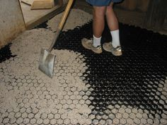 Must have! EquiTerr pavers mats Equine horse stall flooring and footing