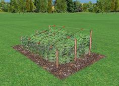 Gardening, Lawn And Garden, Horticulture