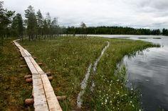 Salamajärven kansallispuisto - satunnainenmatkailija blogspot.fi