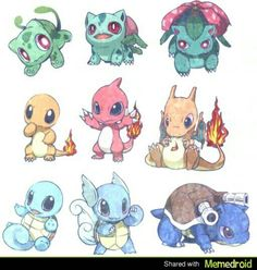 Adorable starters!