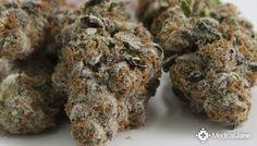Platinum Cookies Marijuana Strain Review | Medical Jane