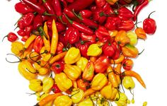 Summer's chile explosion is about much more than five-alarm novelty. Here's how to tease out all the nuanced flavors fresh peppers offer. Get ready: August is going to be lit. Spicy Recipes, Wine Recipes, Mexican Food Recipes, Pepper Recipes, Chili Recipes, Chilli Spice, Cooking Cheese, Cooking Instructions, Edible Garden