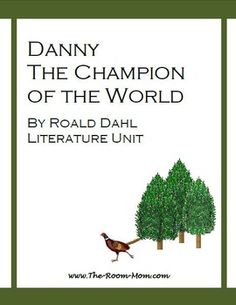 Danny champion of the world writing activities