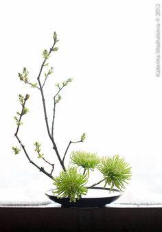 Simple: Branch & Flowers