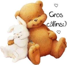 Gros câlins :) #calins gros calins ours lapin