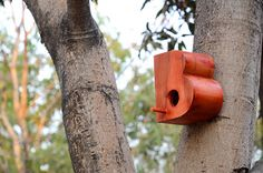Typographic Bird Houses