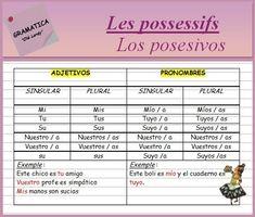 Les possessifs (ficha de gramática) - ¡Olé Lardy!