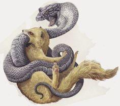 rikki tikki tavi essay Essays and Short Stories - Alternate Ending: Rikki-Tikki-Tavi . Kobra Tattoo, Fairy Tail Tattoo, Animal Print T Shirts, Dog Stories, Short Stories, Raven Art, Honey Badger, Tattoo Project, Snake Tattoo