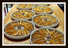 Benefits and tips for dehydrating food