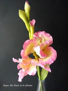 Gladiolos pasta de goma  gumpaste Gladiolos gumpaste flowers