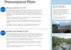 Our new blog, which aims to inform fishing and boating enthusiasts about their best days to get on Sebago Lake and the Presumpscot River, was covered in American Journal. Though the blog was in its initial launch phase, Brad Goulet, manager of hydroelectic facilities and the blog's updater, hopes to add a map, create icons for the page and make it more interactive with the communities and organizations along the river.