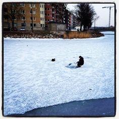 winter day in Malmö