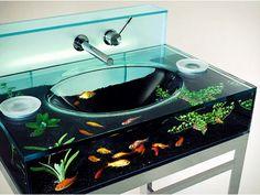 Beautiful Horizontia Guide decor: Aquarium design