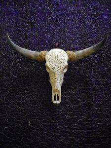 Engraved skulls