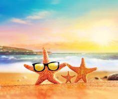 Summertime is here and it's time to round up the family for a fun, relaxing beach vacation. Maybe staying close to home and sitting poolside is more your s