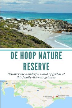 Discover the wonderful world of fynbos at De Hoop Nature Reserve on a family-friendly getaway Sa Tourism, West Coast Road Trip, Cape Town South Africa, Hot Spots, Nature Reserve, Africa Travel, Countries Of The World, Outdoor Travel, Conservation