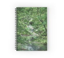 Spiral #Notebook - A creek mostly hidden from public view, I spotted this as we were driving down a country road and went over a small bridge. I stopped and took the photo, and converted it digitally into an oil painting. #hidden #creek
